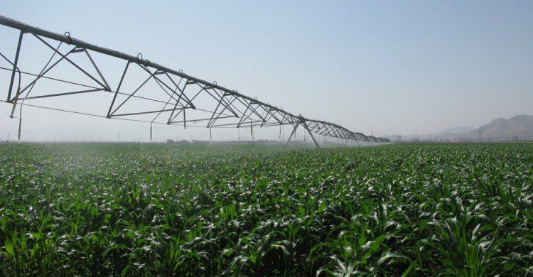 ایستگاه تحقیقات کشاورزی اراک