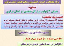 معرفی ۳ ژنوتیپ برتر گل محمدی در استان مرکزی