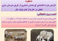 افزایش بازده اقتصادی گوسفندان عشایری از طریق همزمان سازی فحلی در خارج از فصل تولید مثل